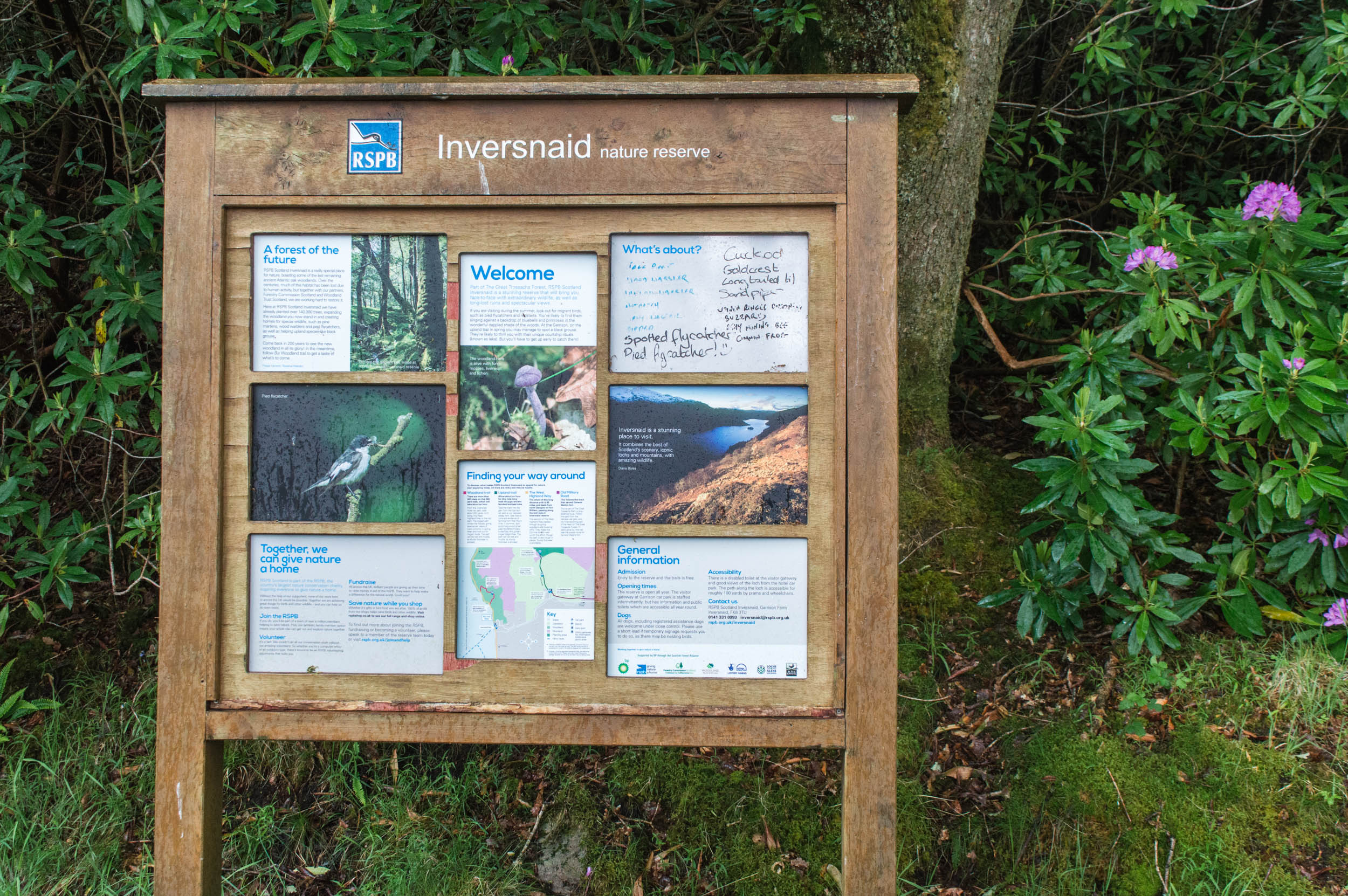 Inversnaid RSPB Reserve