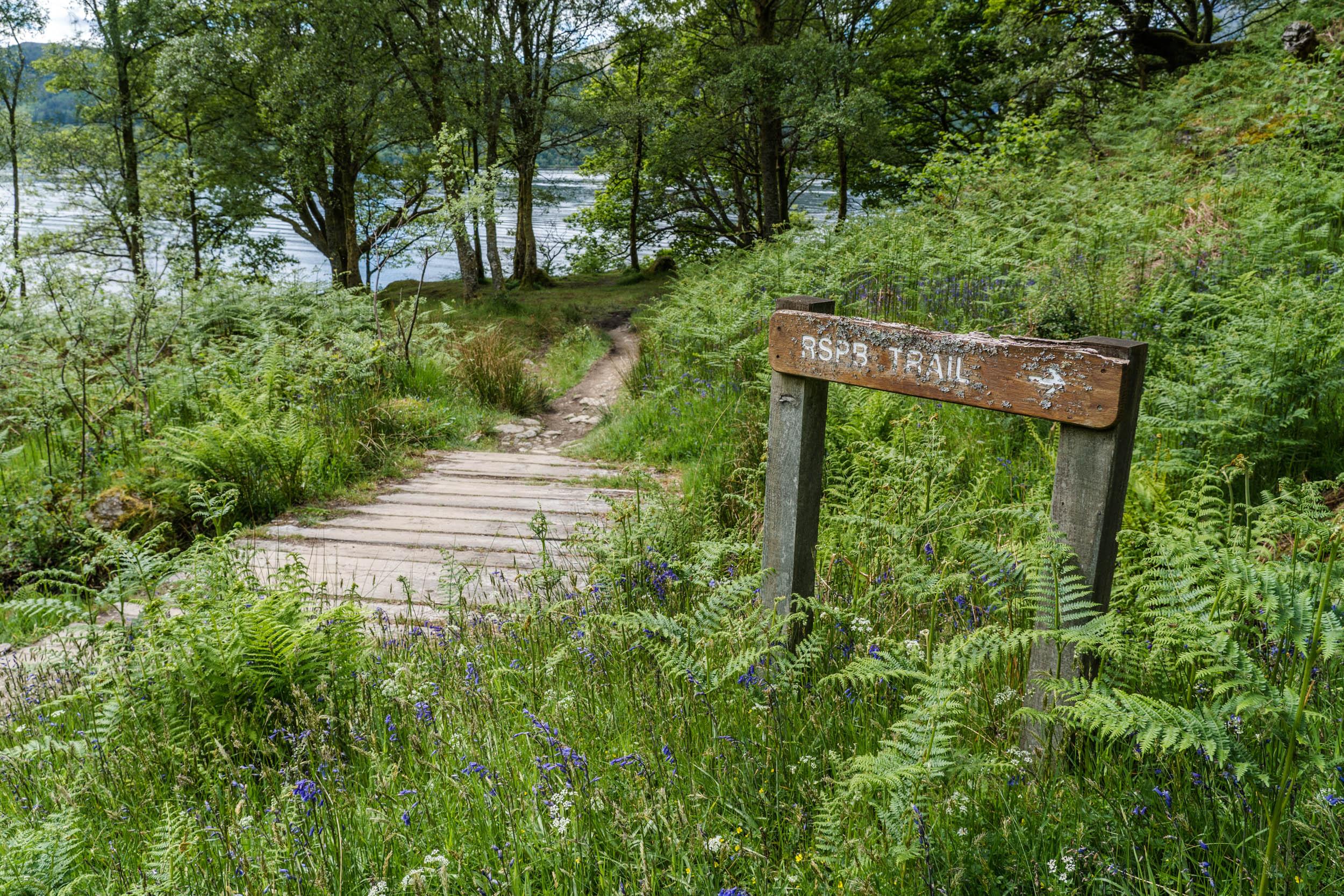 RSPB Trail, Inversnaid