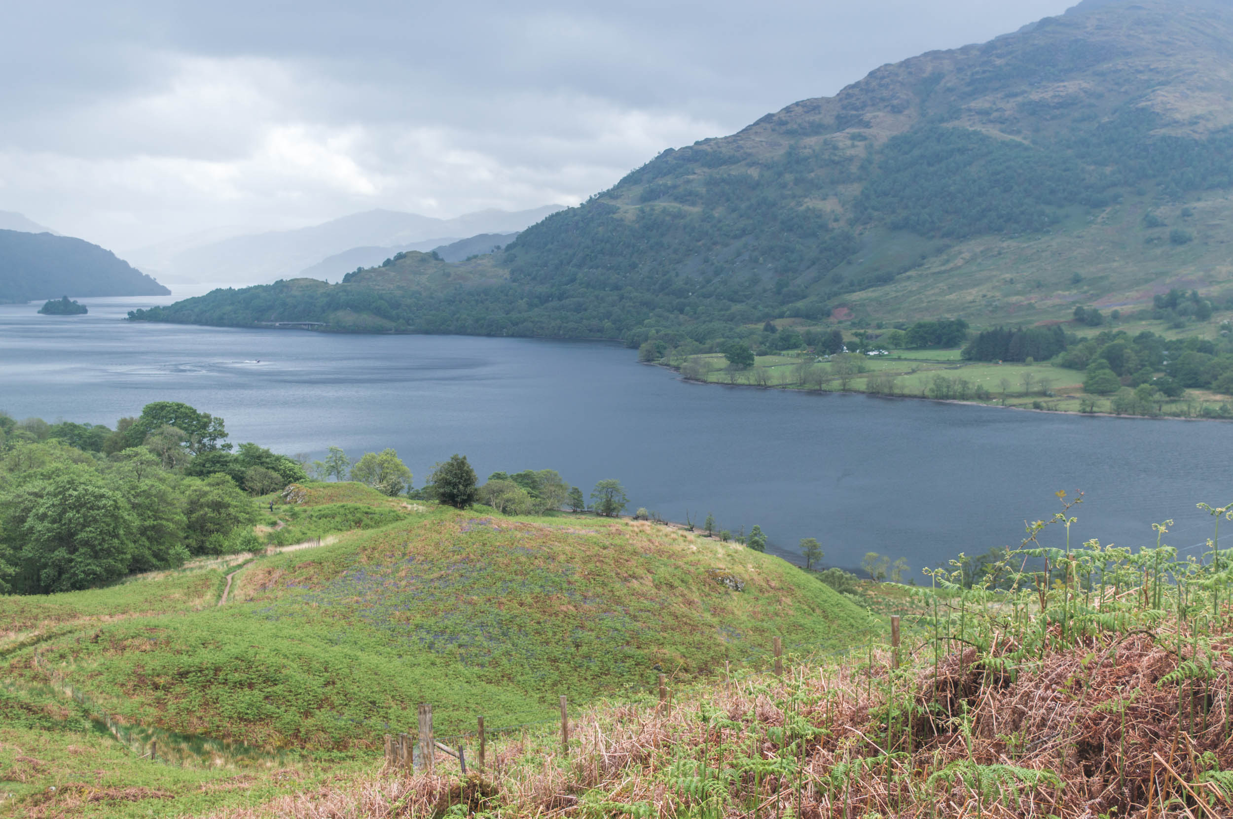 West-Highland-Way-Inverarnan-0278.jpg