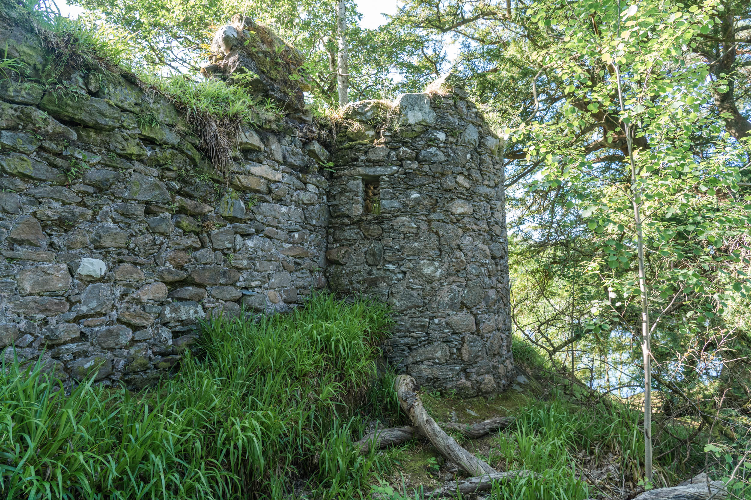 Inveruglas Island, Loch Lomond