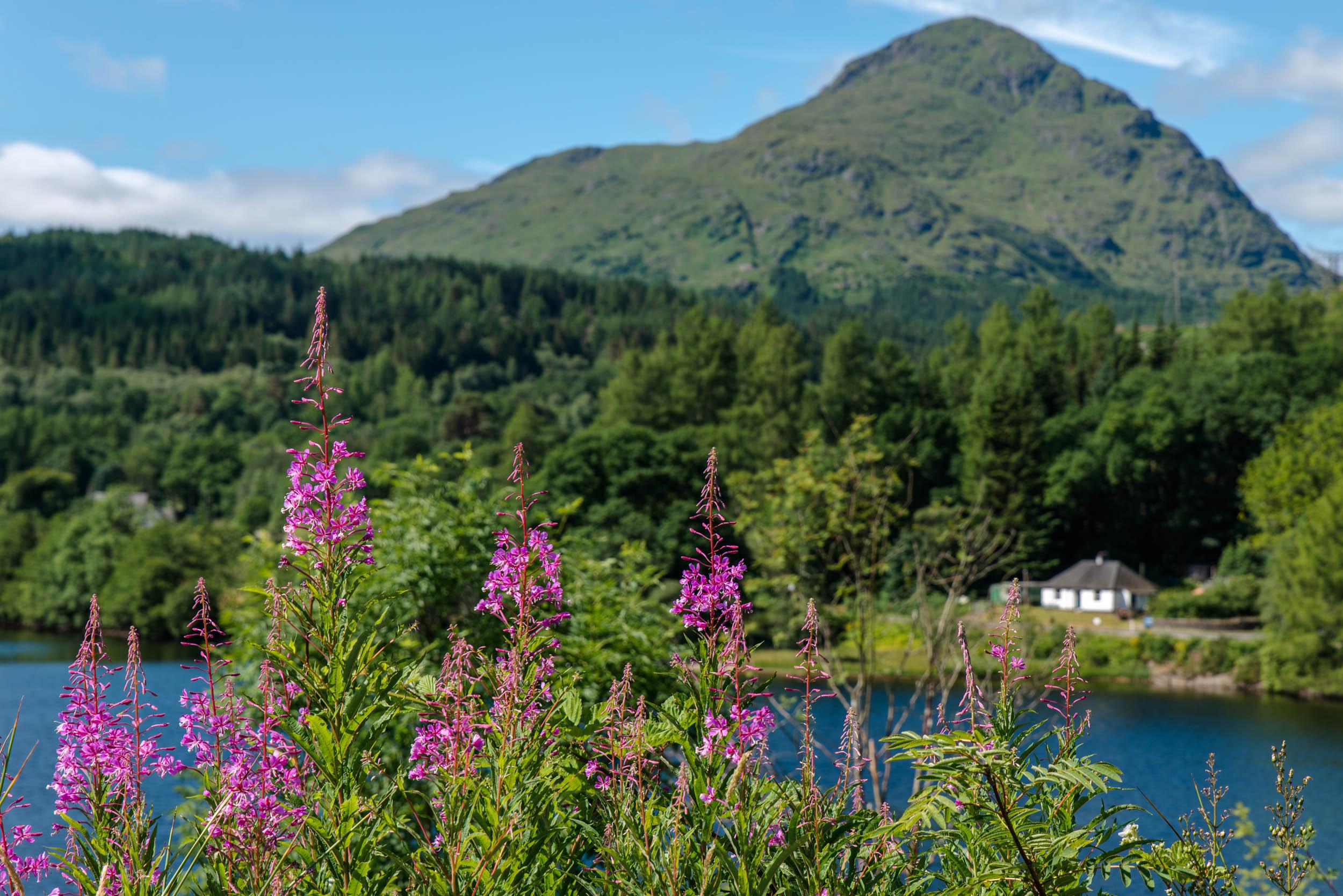 Inveruglas-Loch-Lomond-1608.jpg