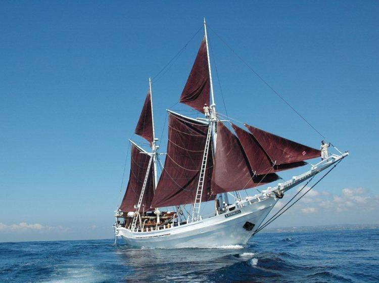 TVOF-Blog-Images-Boats2.jpg
