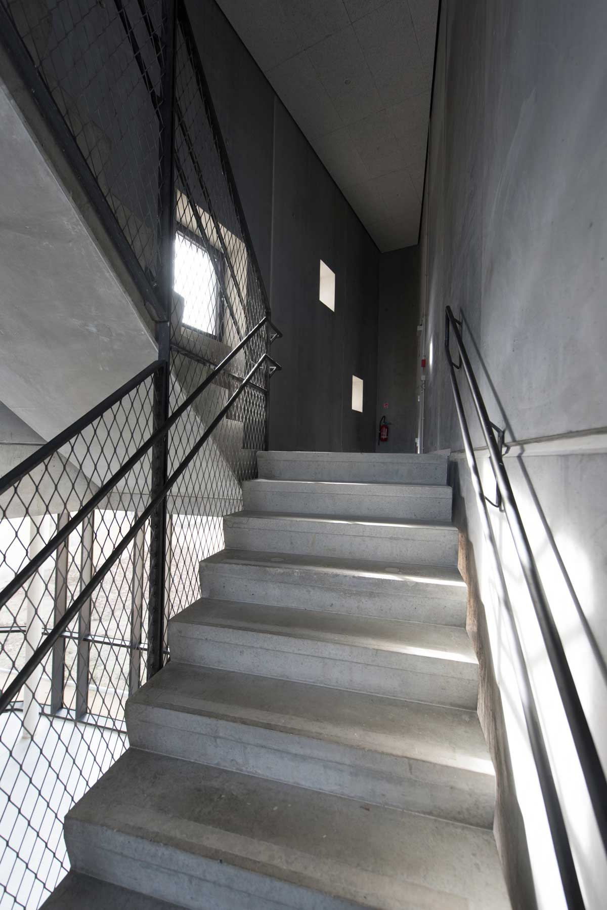 focus-archi-magazine-ecole-du-cirque-escalier.jpg