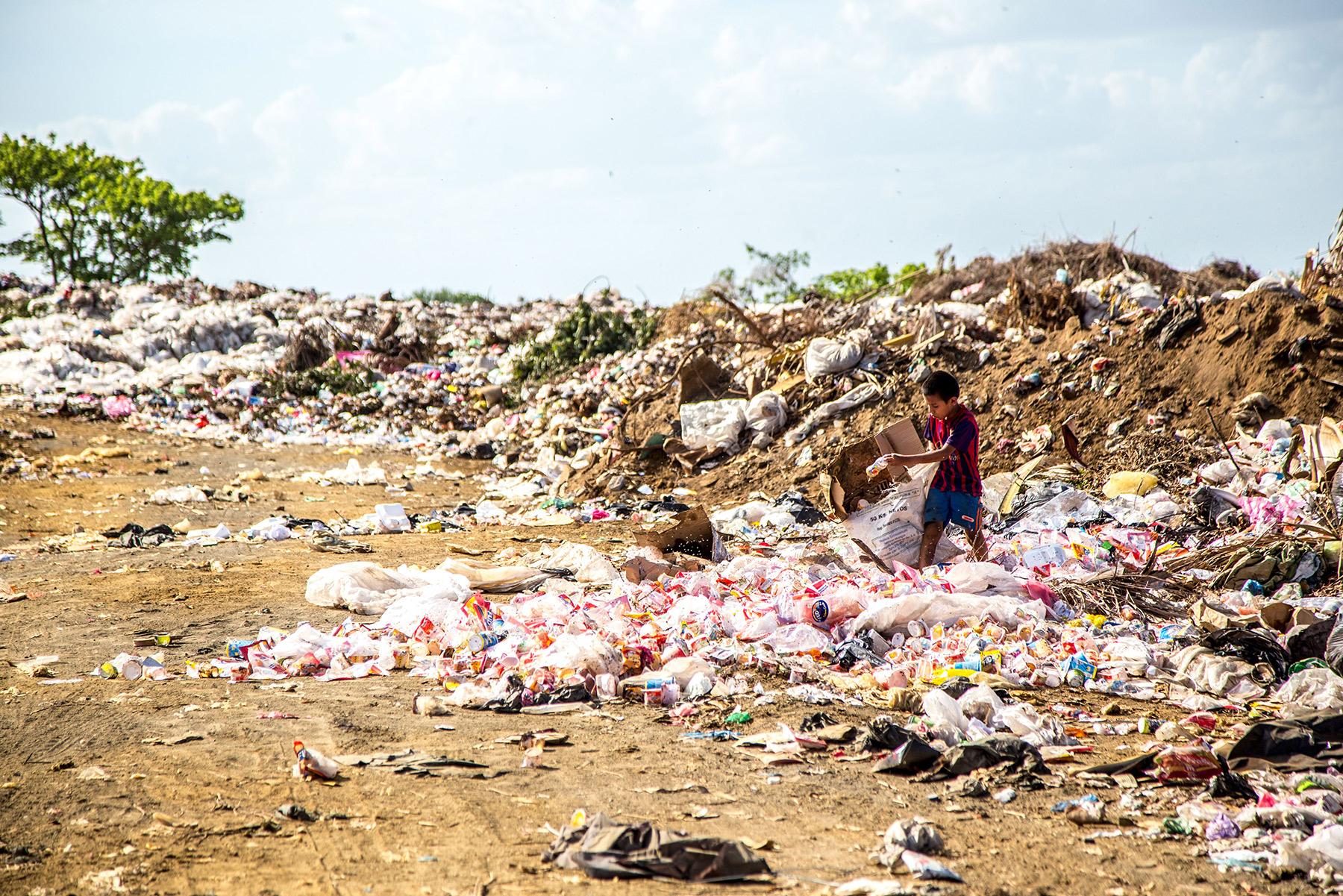 Plastic-Pollution-Straw-Ban-Europe-UK-Bamboo-Straws.jpg
