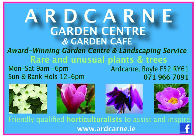 Ardcarne Garden Centre Boyle -
