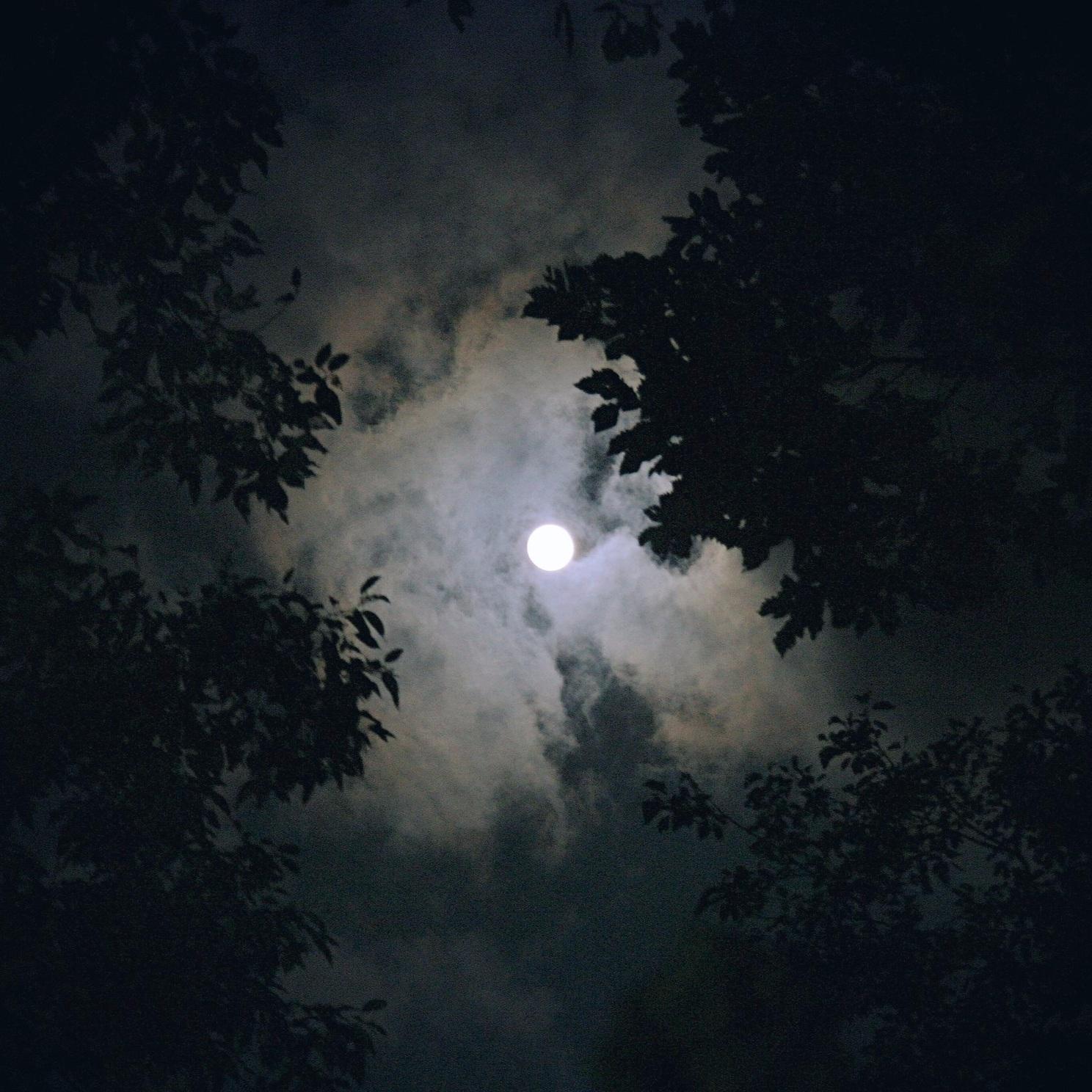 FullMoon_Darkness.jpg