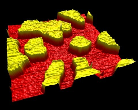 Figure 4  : Phase separation in a DOPC, Sphingomyelin (SM) , and Cholesterol bilayer imaged using dynamic AFM in Sodium Phosphate buffer. The yellow regions show liquid ordered SM/cholesterol bilayer extending about 1nm above the surface of the liquid disordered DOPC/cholesterol (red) bilayer.