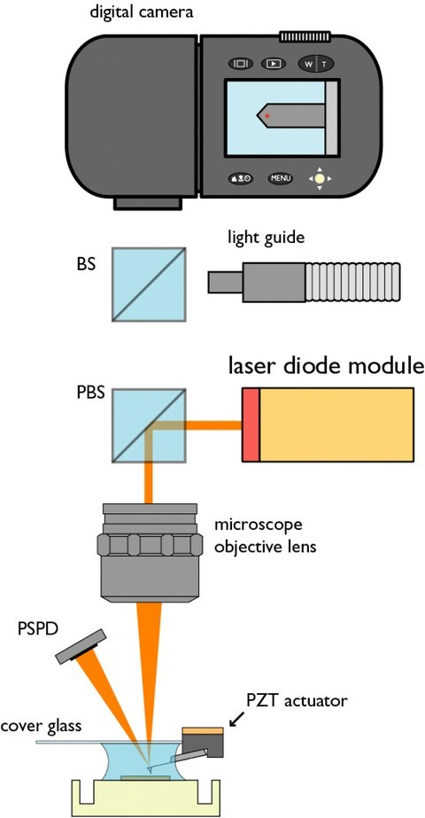 Figure 1: A schematic illustration of the Low noise AFM