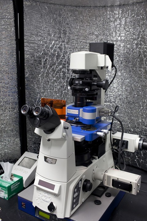 Figure 2:  Combined  JPK  Nanowizard II AFM and  Nikon  Ti/E epi-fluorescence microscope. The microscope is also capable of phase contrast and polarized light microscopy as well as differential interference contrast (DIC). It is equiped with a sensitive Hamamatsu CCD camera and lenses ranging from 10x/0.3 to 60x/0.6.