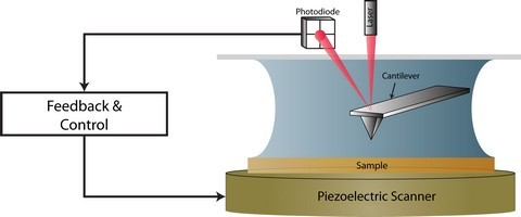 Figure 1: Schematic illustrating that activation of a cantilever via MAD mode.