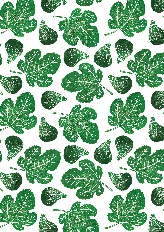 OLIVIA figs.jpg