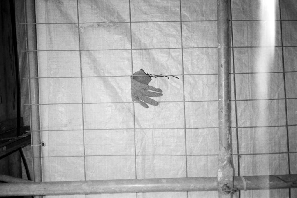 2018-03-13_Vergessener_Handschuh_Yashica_T2D_Kodak_TMAX100_web.jpg