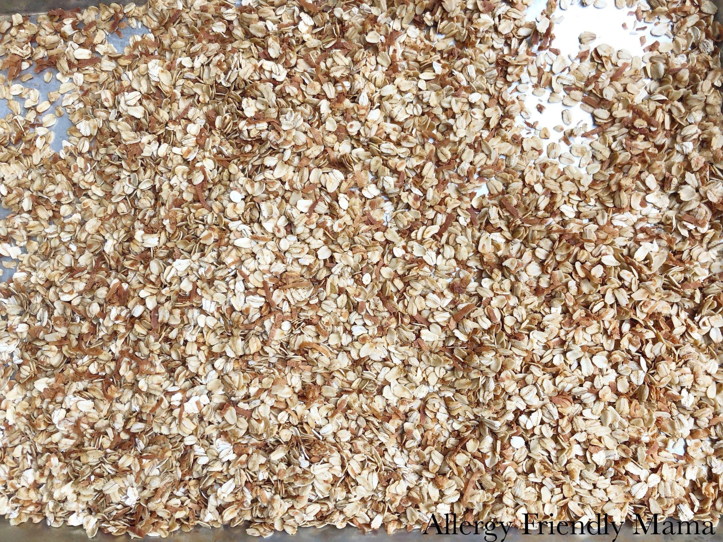 granola2 AFM.jpg