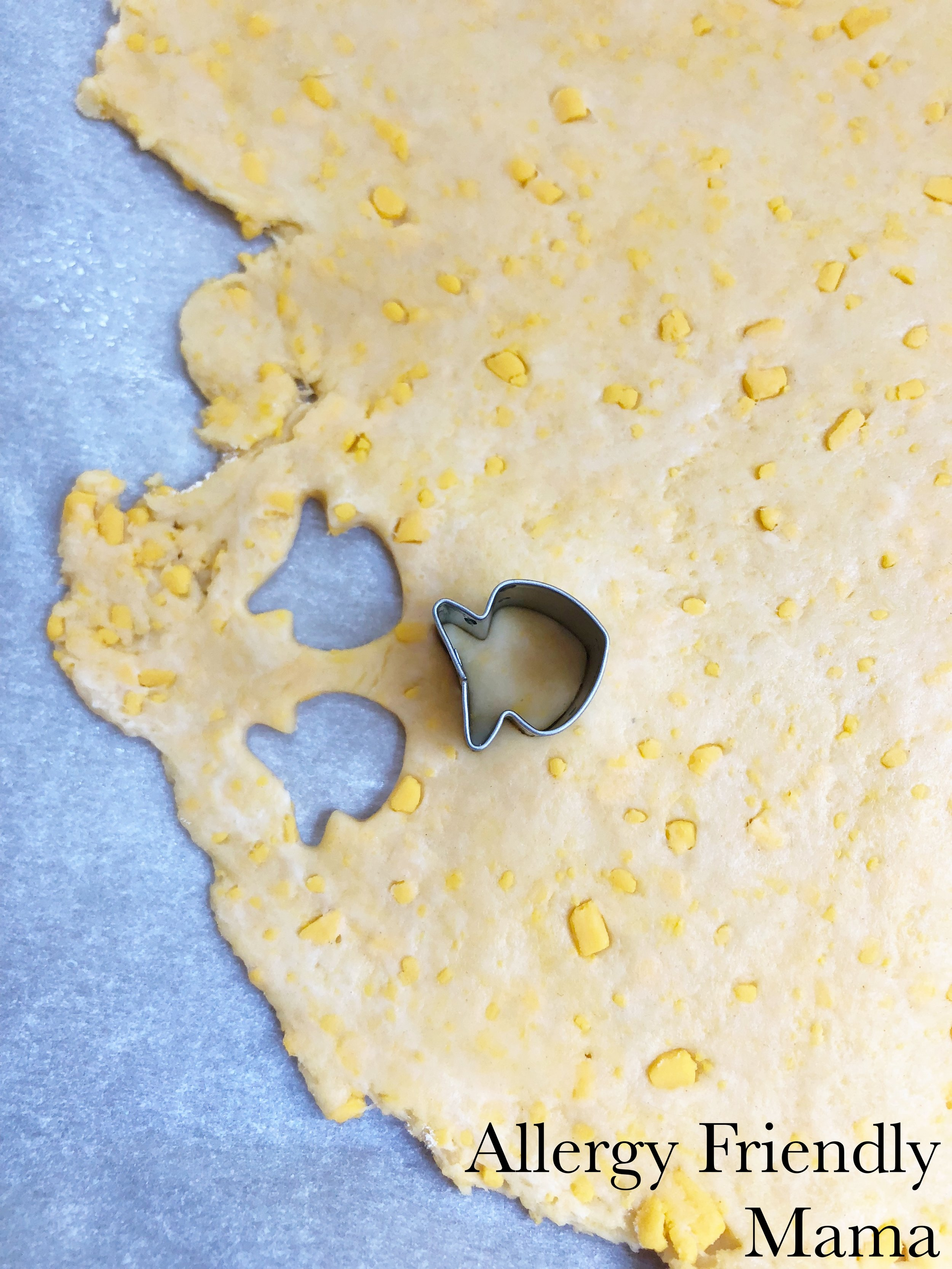 AFM Goldfish2.jpg
