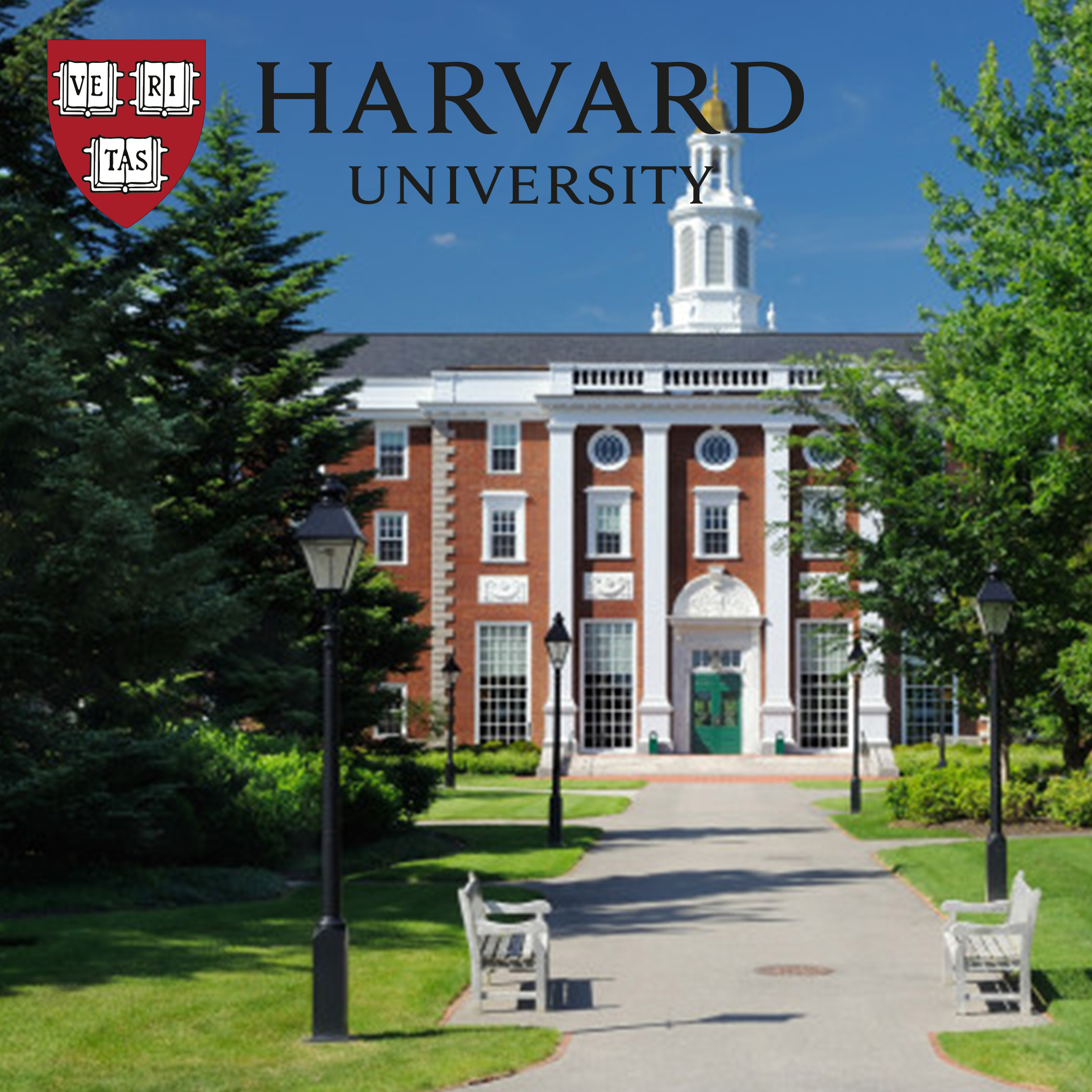 Harvard Univerisity -