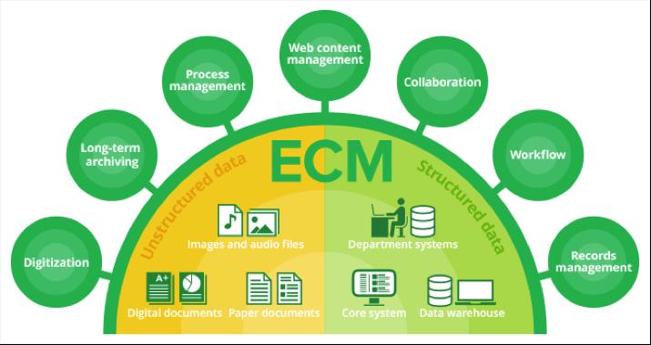 ECM_diagram.png