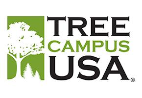 treecampus_usa_small.jpeg