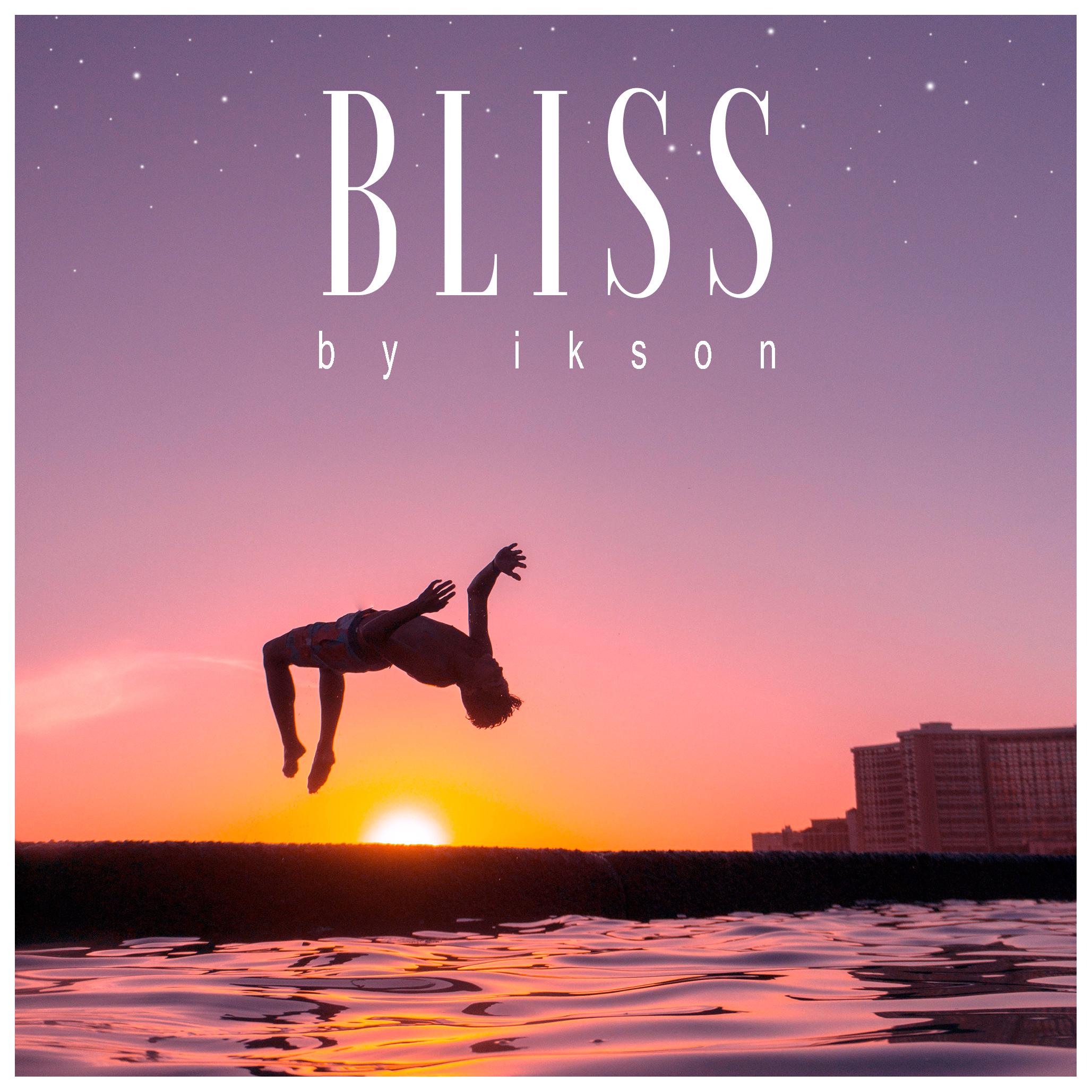 BLISS w Canvas.jpg