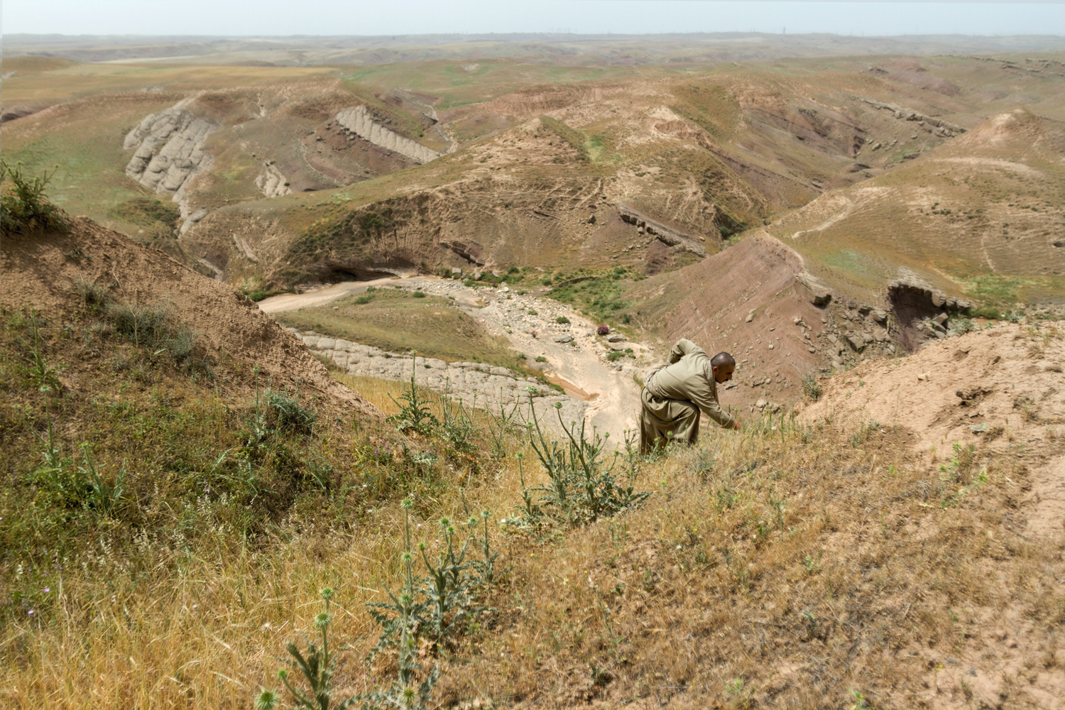 Jarmo, a neolithic farming site in northern Iraq's foothills, is believed to be one of the world's earliest farming villages. Archaeologists have found evidence of domesticated wheat and seed storage that date from around 8,000 B.C. Today, whether by genetic modification or by law, farmers cannot save seeds from many crops.