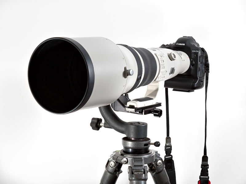 My 800mm f/5.6 mounted on a Gitzo 5541LS and Wimberley Head.