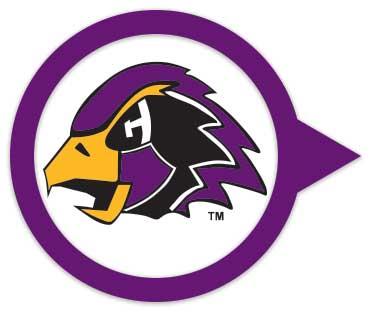 purple-level.jpg