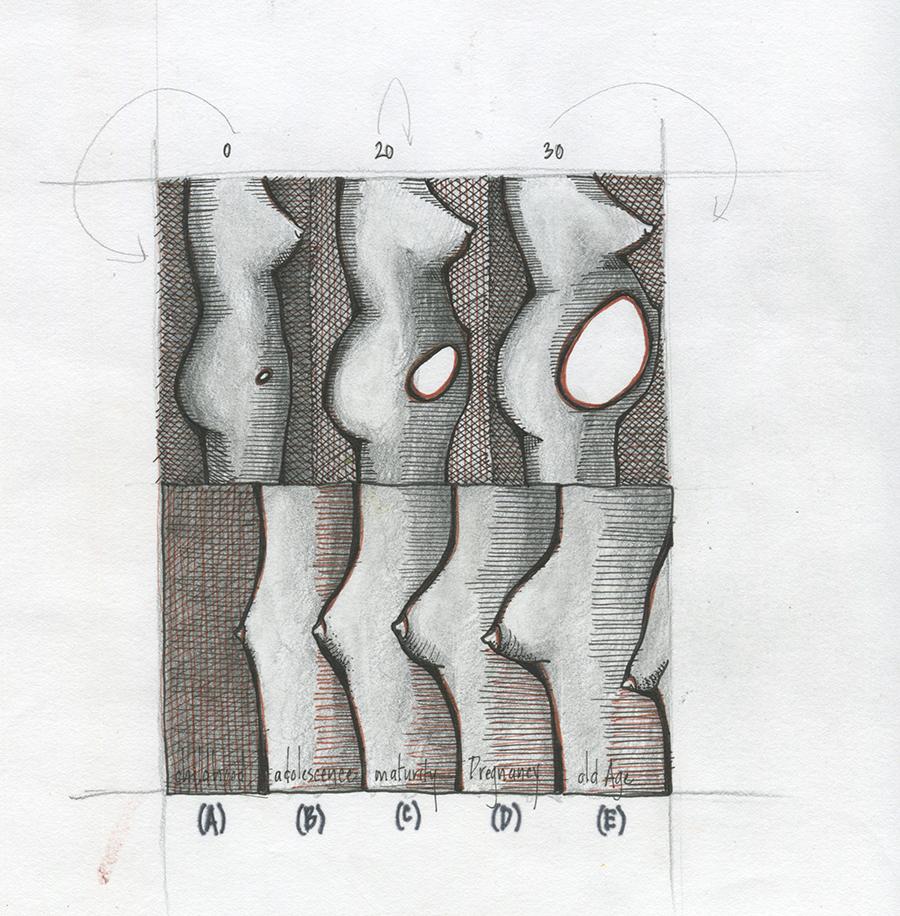 anatomy_05.jpg
