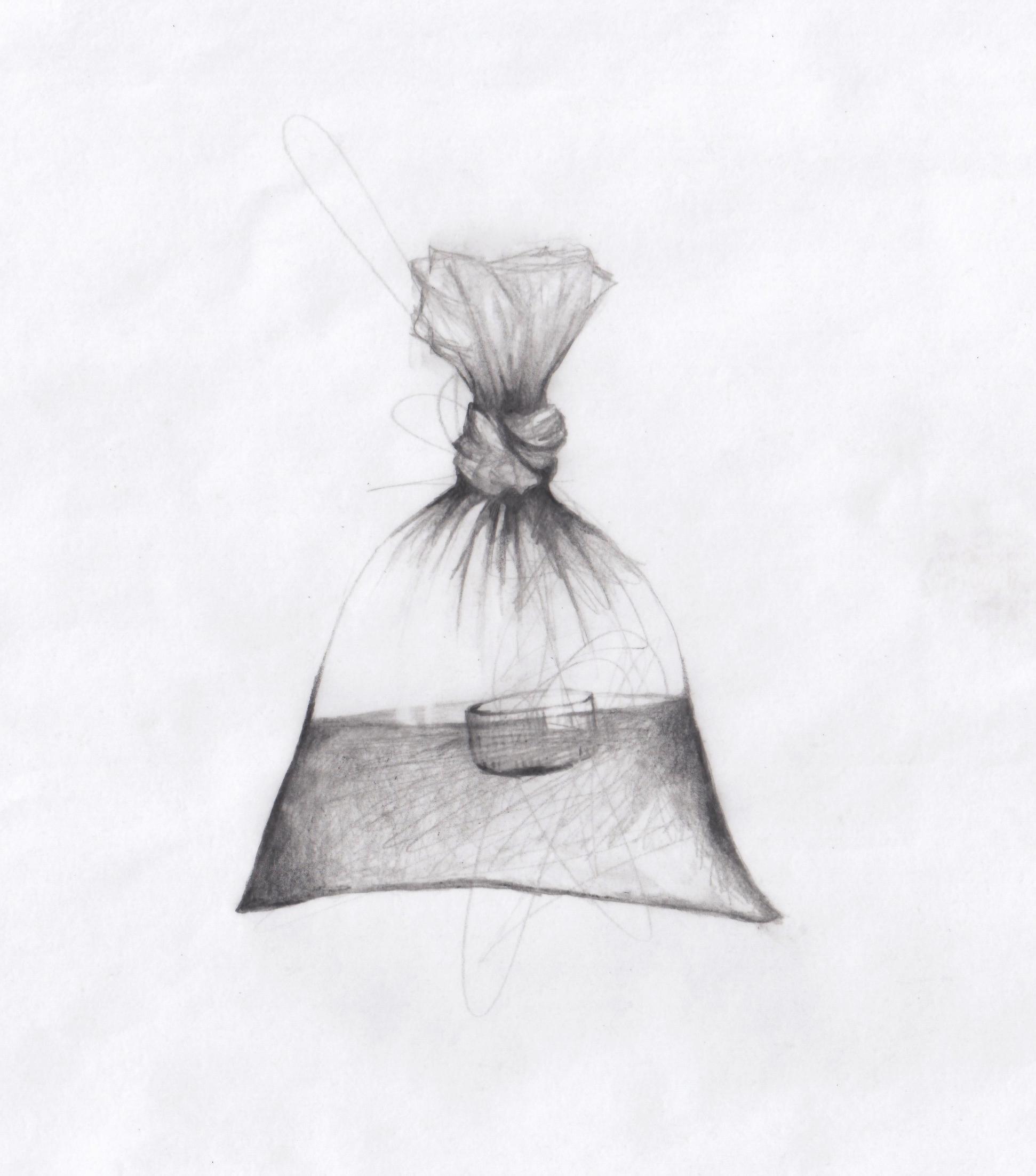 Pet Fish Bottle Cap in a Bag