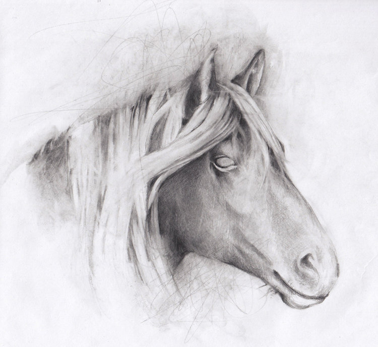holy_nothing_horse.jpg