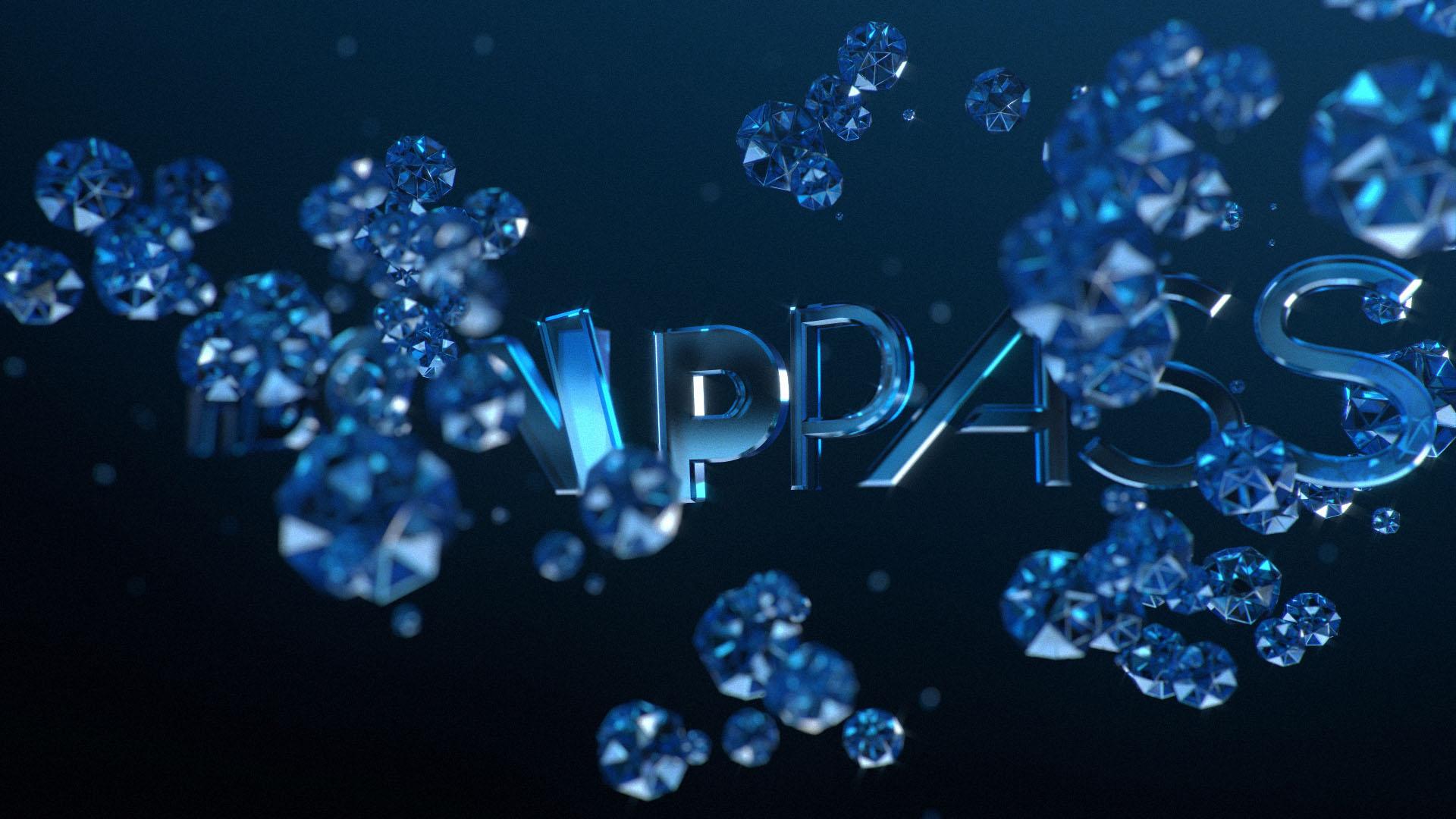 VIP_OPEN_02.jpg