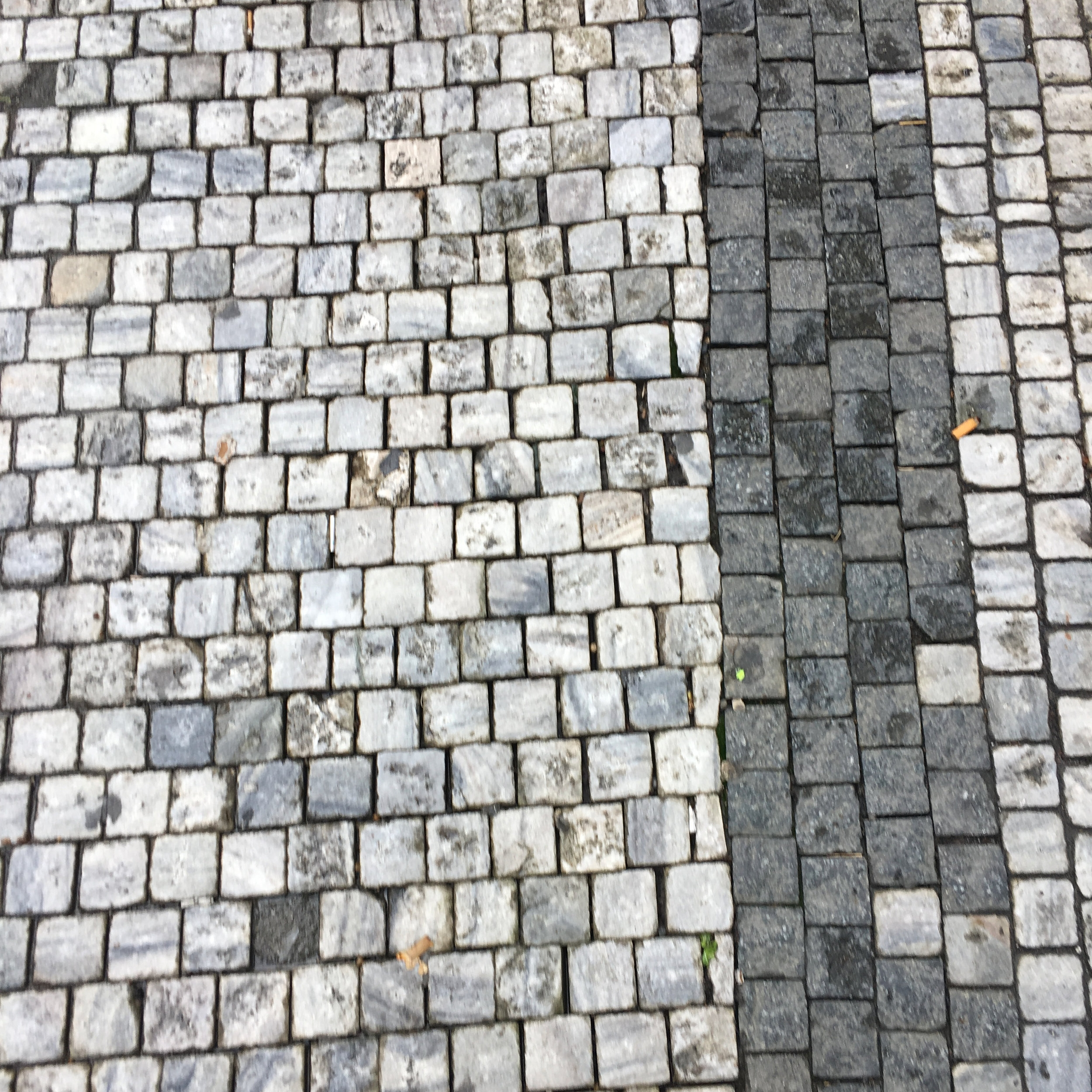 Organized-Stones-Walk.jpg