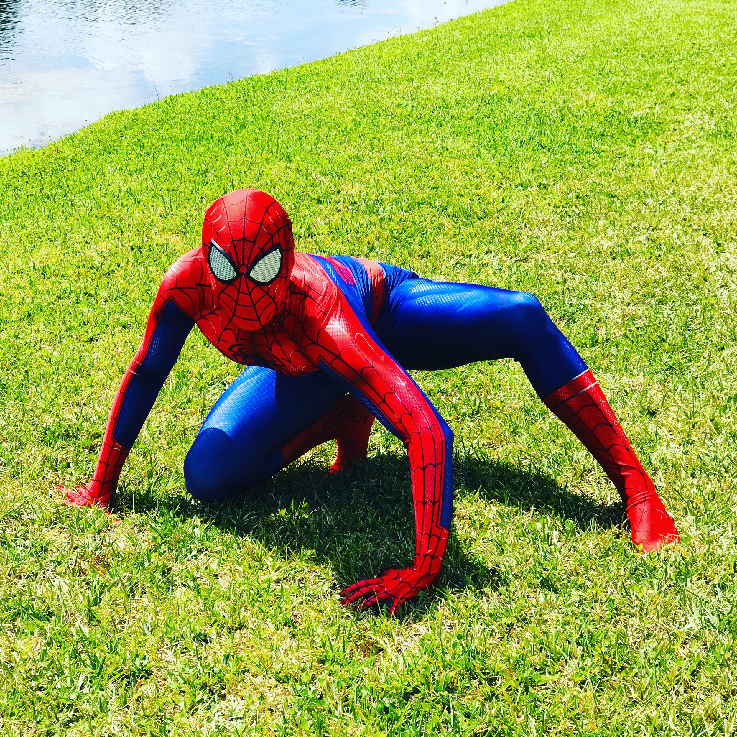 Spider .JPG