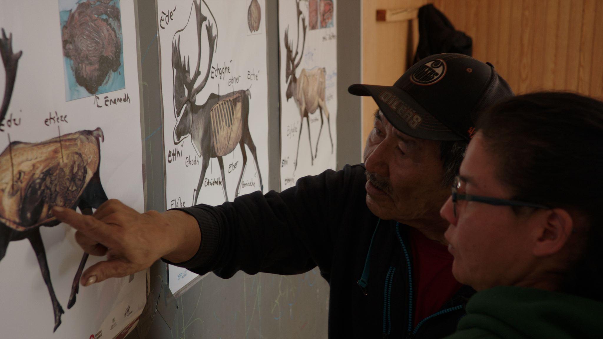 Elders in Wollaston Lake, Saskatchewan teach younger generations about butchering caribou meat.