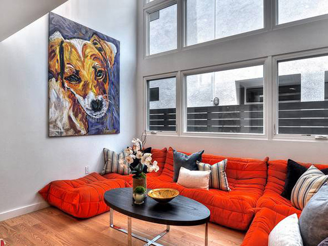 Dog in a NY Apartment - 5 ft x 6 ft