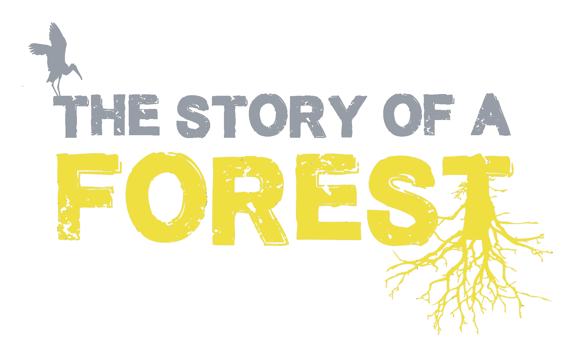 The story of a forest logo REV2.png