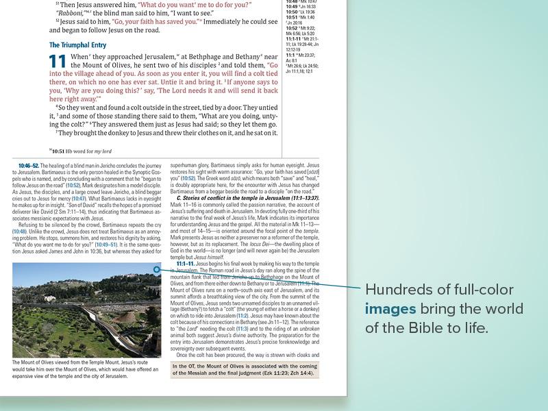 CSBIllustratedStudyBible_site_feature_slides7.jpg