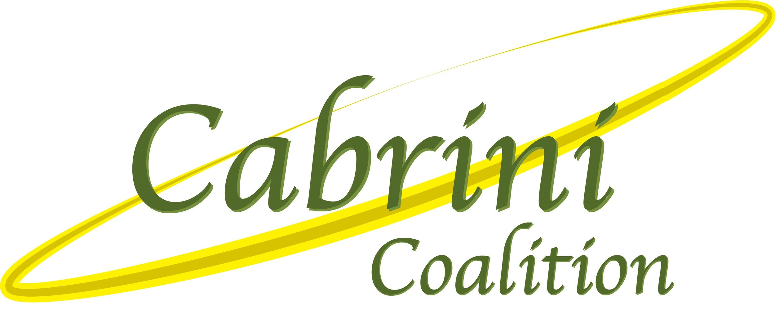 -cabrini-coalition-immigration-outreach-social-justice-ministry-st-francis-de-sales-church-new-york-city.png