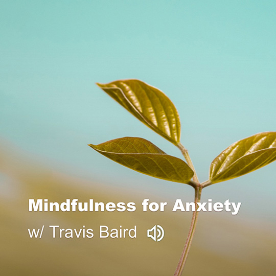 mindfulness for anxiety small.jpg