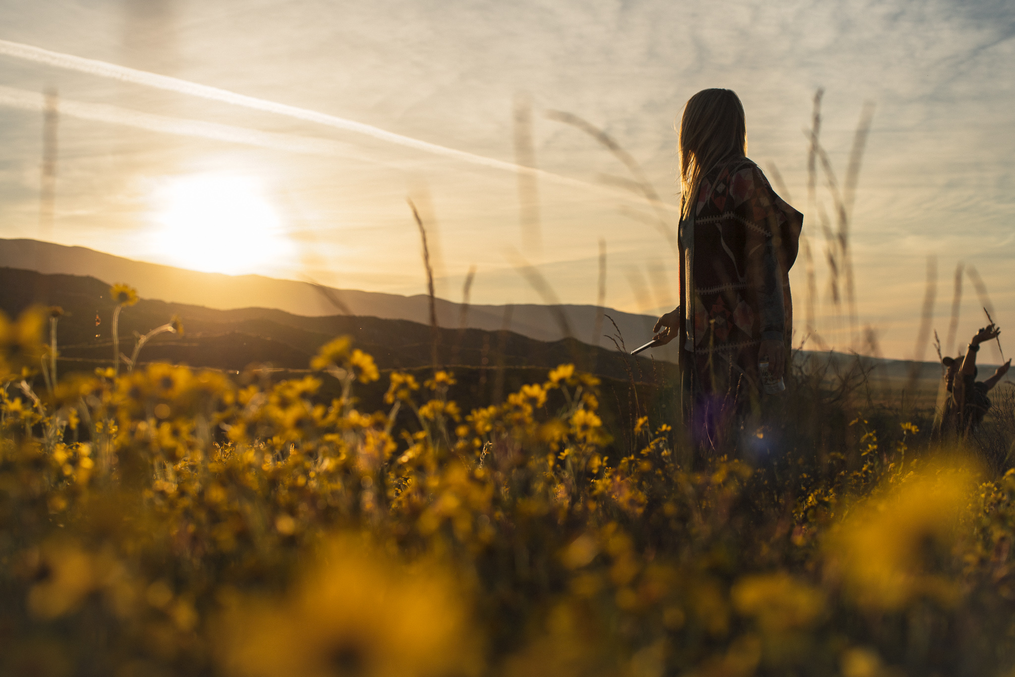 Flowers Sunset.jpg