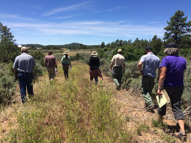 Partners from the Bureau of Land Management, Colorado State Forest Service, and San Juan National Forest conducting a community assessment with Neighborhood Ambassadors