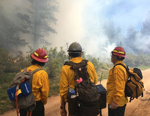 On Sunday, June 9th, four participants representing WAP and DWRF toured prescribed burn operations in the Boggy Draw area northeast of Dolores in the San Juan National Forest. This opportunity was graciously offered by the USFS Dolores Ranger District and led by Public Information Officer Jessie Borden of Cortez FPD.