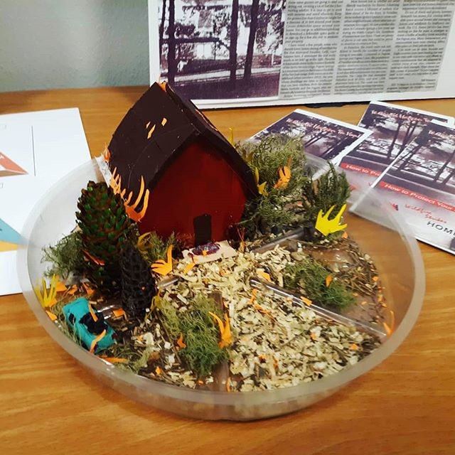 Our wonderful Holiday Acres Ambassador in Archuleta County created this defensible space teaching display! Thank you for sharing, Jo Jo!