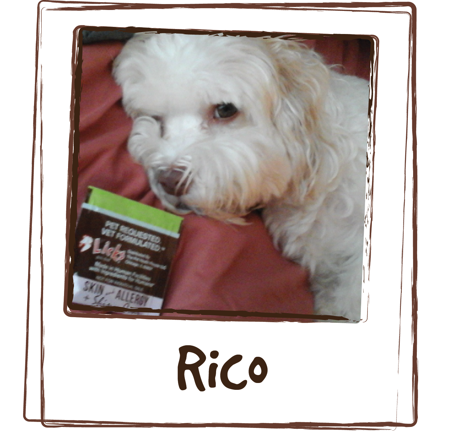 """""""Rico has skin allergy problem, he at times constantly scratch his body or licking his feet. We found licks allergy last month and Rico's symptoms start to improve. He is a very picky eater but he liked up the entire pack on the first try. Great product."""""""