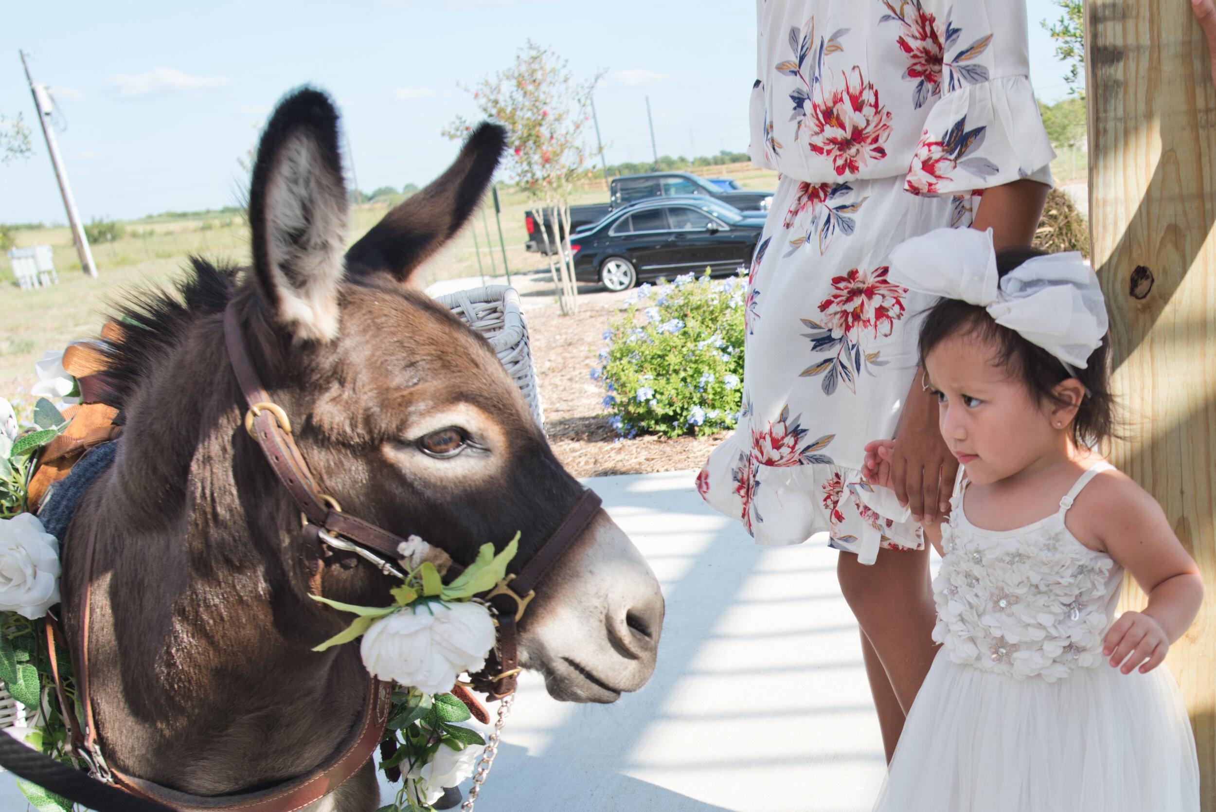Molina_Wedding-263.jpg