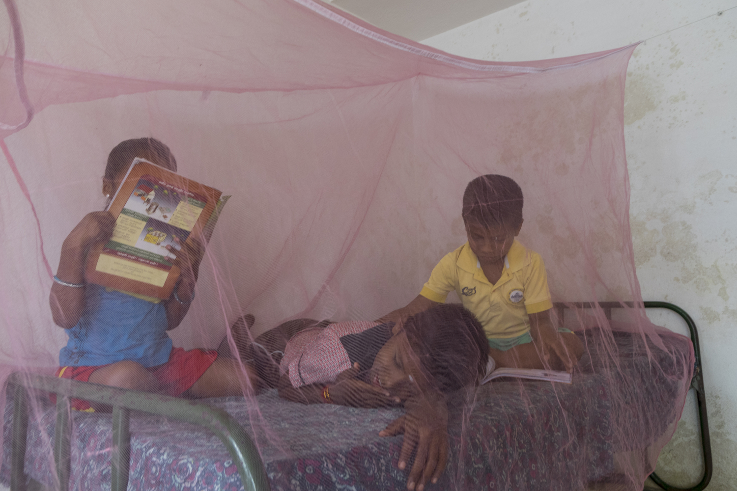Karthika. S - Poornitha is reading her math book. Hari Haran wakes Shakthi while he reads his GK book. The pink colour net protects them from mosquitoes. They'll share their bed with each other in Chettipalayam, Coimbatore. They are brothers and sisters.
