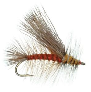 B)Stonefly Adult  Stimulator