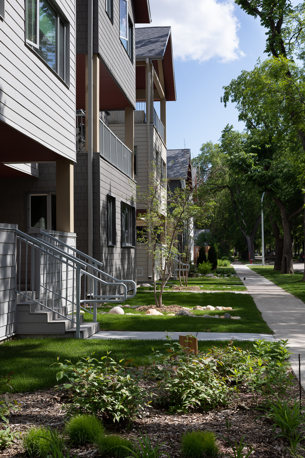 Old-Grace-Housing-Coop-streetscape-yards.jpg