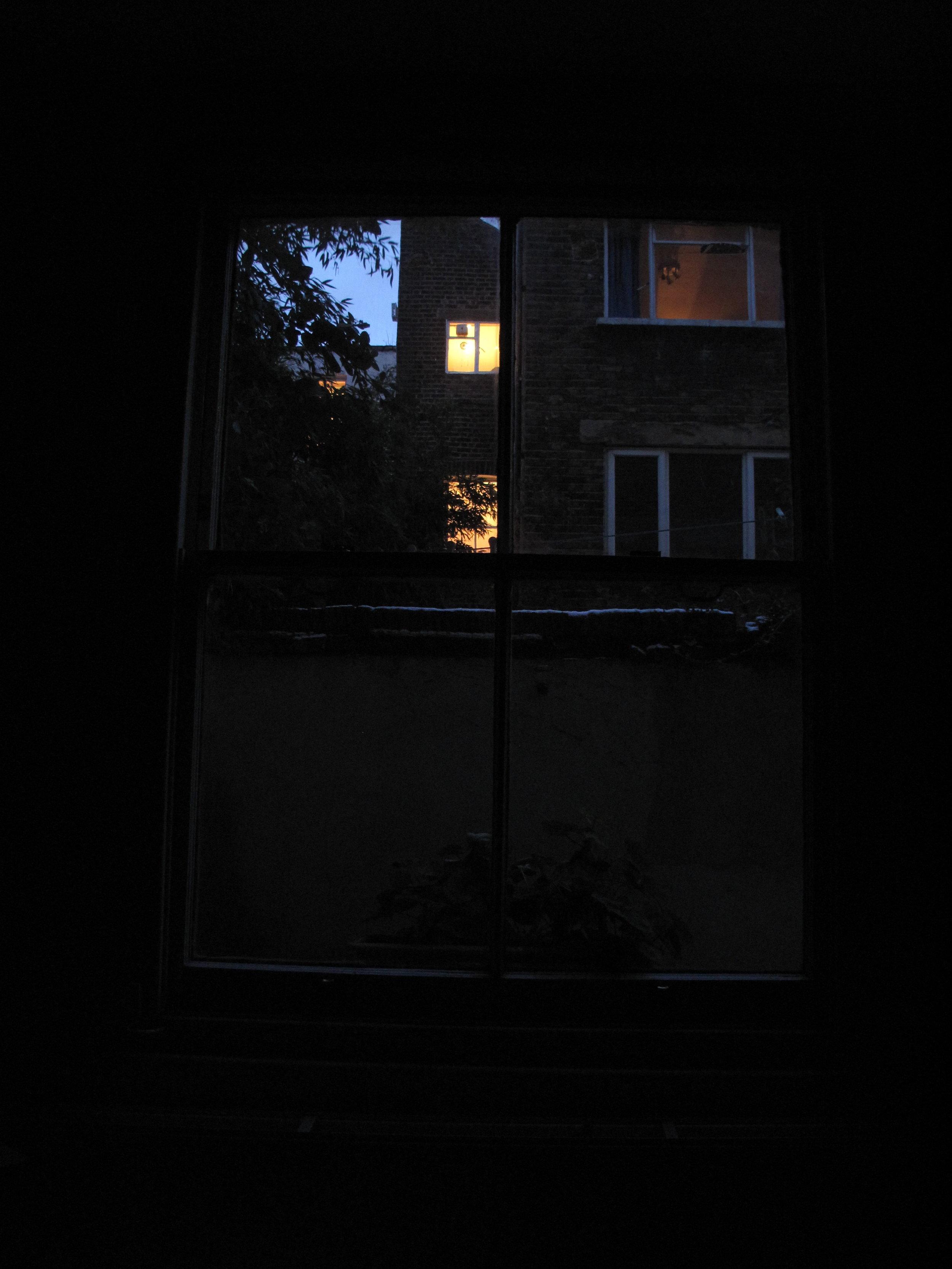 f.Lounge window 7 Jan, 4.40pm.JPG