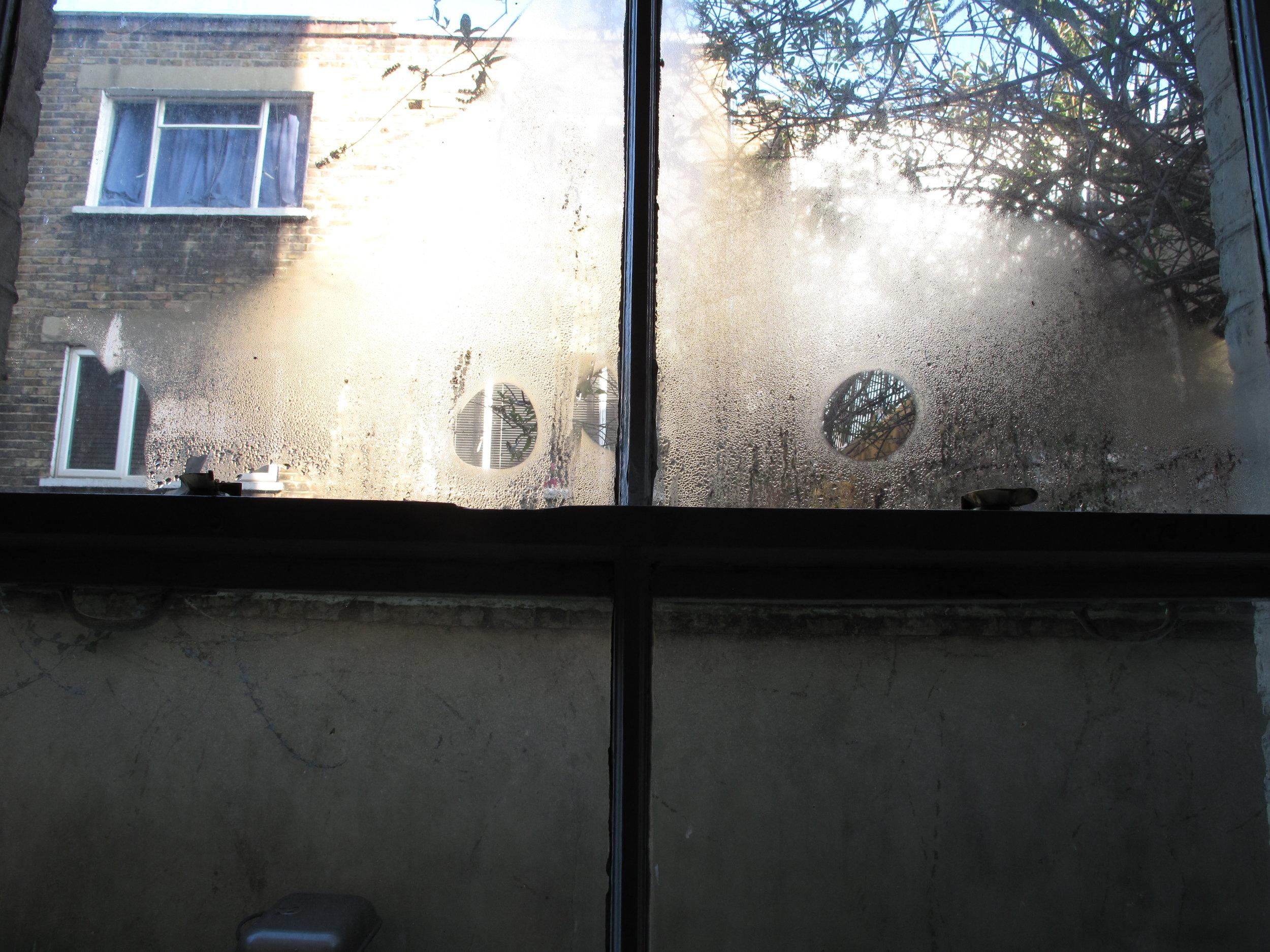 b.Bedroom window, 20 Feb, 09.41am.JPG