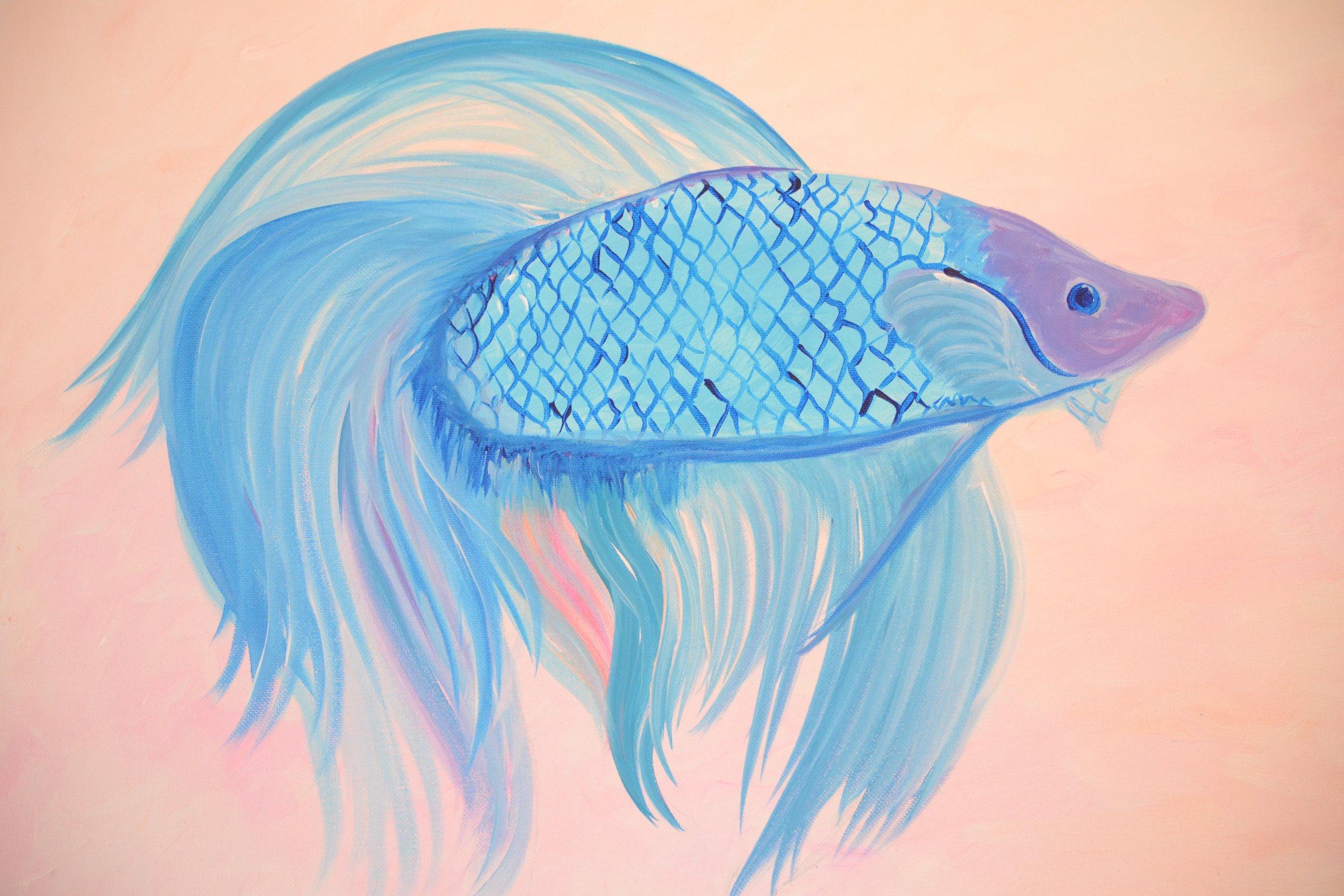 Beta Fish.jpg
