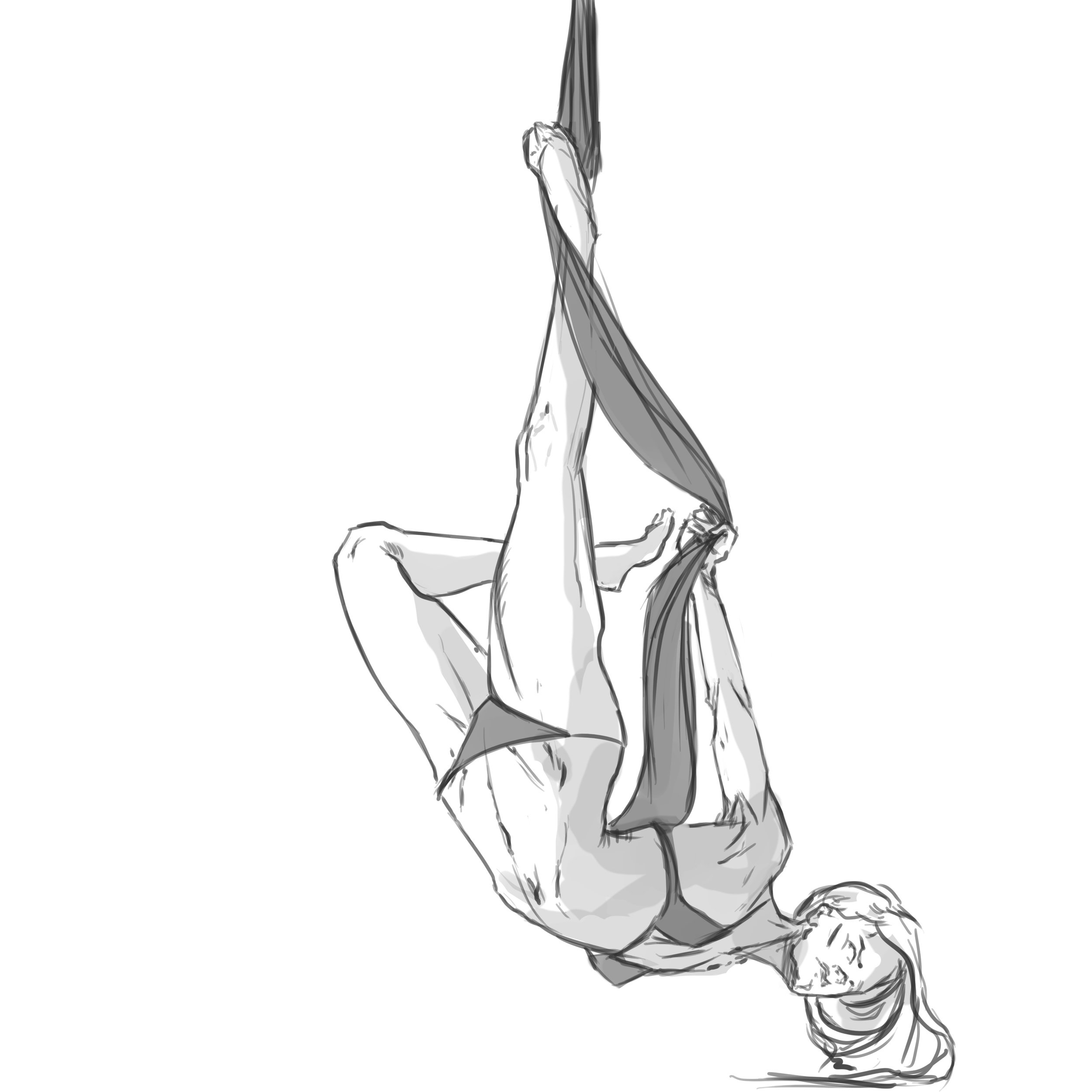 Arial Silks figure study